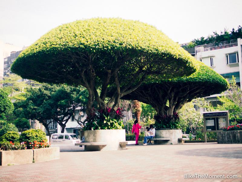 OLYMPUS DIGITAL CAMERA  【外地遊記】台北。同踏初春之美 130324 152813