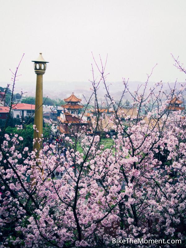 OLYMPUS DIGITAL CAMERA  【外地遊記】台北。同踏初春之美 130325 134911