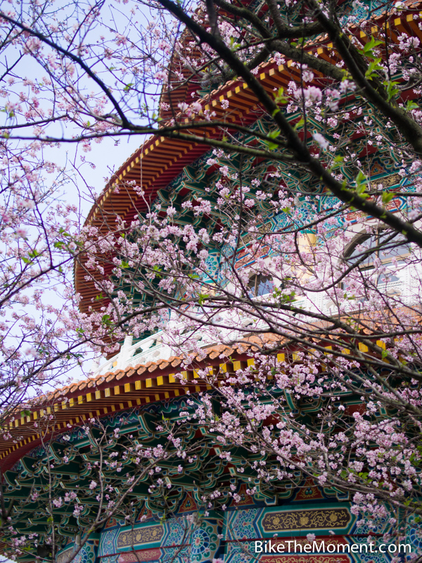 OLYMPUS DIGITAL CAMERA  【外地遊記】台北。同踏初春之美 130325 135353