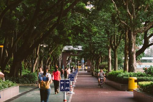 P7160227 香港城市單車生活地圖 香港城市單車生活地圖 P7160227