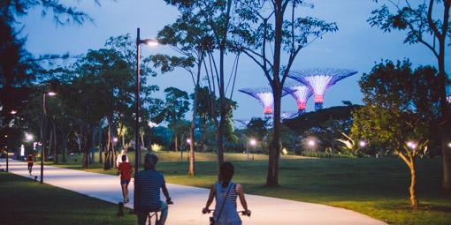 轆轆遊遊。新加坡 Gardens By The Bay 黃昏單車小散步