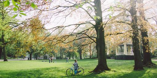 轆轆遊遊。荷蘭隱世單車小鎮 格羅寧根(下)
