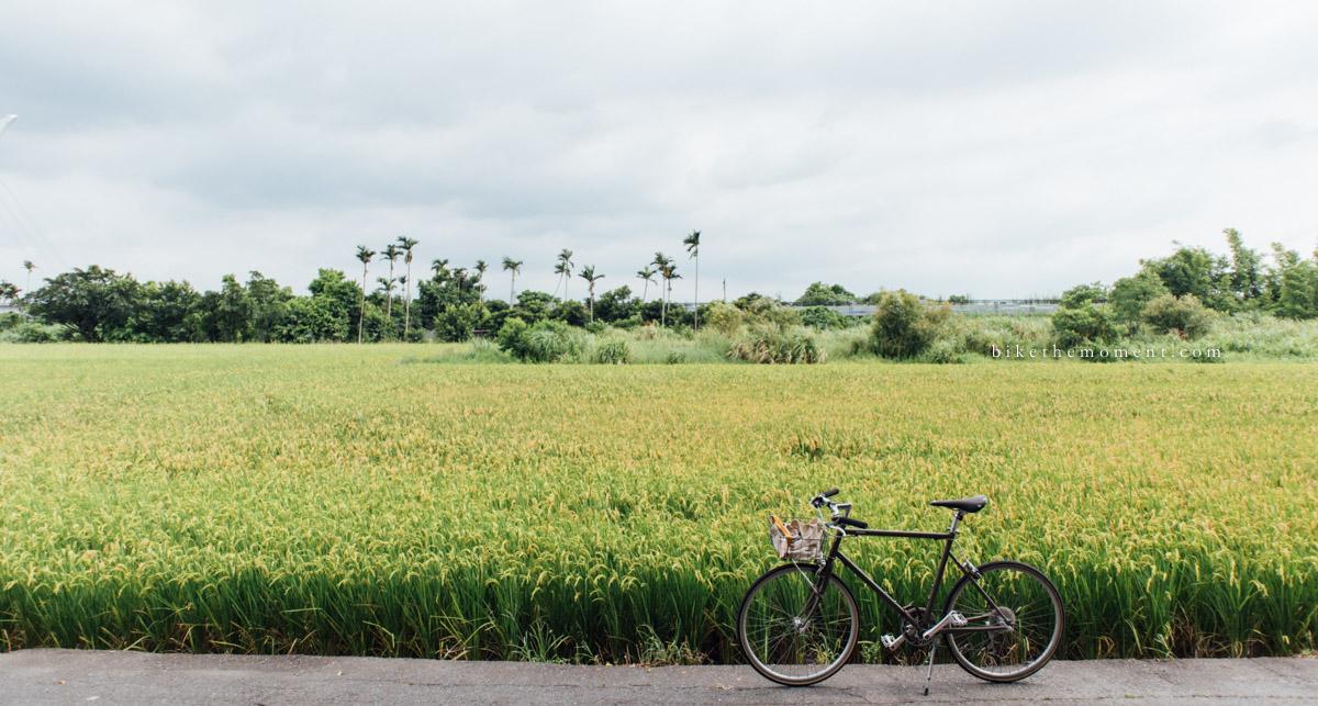 bike the moment 台北單車遊記 2017  台北遊記2017。淡水 IMG 0438